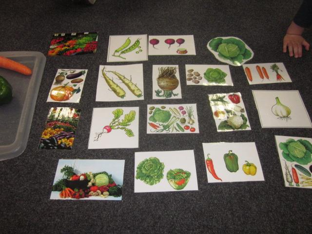 Na Straganie Poznajemy Warzywa 11102014pss Northampton